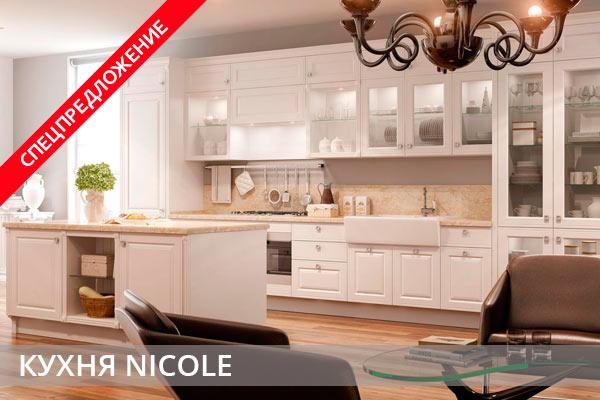 Спецпредложение кухни NICOLE